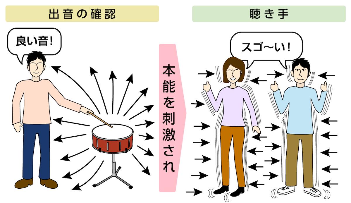 本能を刺激する音 ドラム